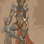 Splint and chain mail armor